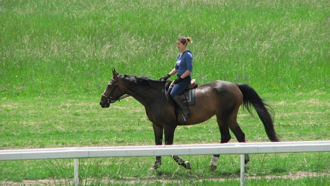 Bluzy jeździeckie – jeden z ważniejszych elementów